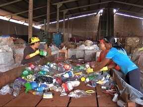 Pesquisa mostra aumento na consciência ambiental dos brasileiros - Uma pesquisa encomendada pelo Ministério do Meio Ambiente em todas as regiões do país, revela o nível de consciência do brasileiro sobre os recursos naturais. Em 20 anos a percepção melhorou bastante.