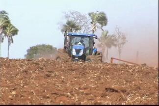 Área plantada com soja deve registrar expressivo aumento na próxima safra - Em GO, a novidade é que a plantação deve ocupar também pastagens degradadas.