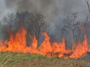 Novos brigadistas são convocados para combater fogo na Chapada dos Guimarães - O Instituto Chico Mendes convocou mais 18 brigadistas para combater o fogo que ameaça o Parque Nacional de Chapada dos Guimarães. Os focos do incêndio se multiplicam nas chácaras vizinhas ao cartão postal mais famoso de Mato Grosso.
