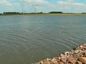 Chuvas aumentam nível de barragens no Rio Grande do Sul - A chuva dos últimos dias, chegaram a registrar o acumulado de 48 milímetros. Em algumas propriedades, o nível das barragens subiram para 70% da sua capacidade de irrigação. O preço do grão também deixou os produtores satisfeitos.