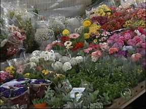 Mercado de flores comemora a chegada da primavera - O mercado de flores está aquecido com a chegada da primavera. Nesta época do ano, talvez estimuladas pelo colorido que vêem nas ruas, as pessoas compram mais e ajudam a aquecer este mercado que cresce de forma significativa.