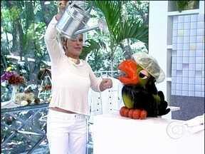 Louro José solta a voz e ganha banho de verdade de Ana Maria - Papagaio ia cantar em chuveiro fictício, mas levou um banho de verdade