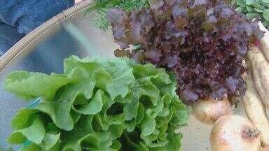 Fernando Kassab dá dicas sobre alimentos orgânicos - Conheça os benefícios dos tubérculos.