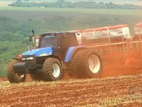 GO: agricultores de Jataí retomam o plantio da safra de milho - Com a volta da chuva, as máquinas voltaram para as lavouras e os agricultores de Jataí, em Goiás, retomaram o plantio da safra de milho. Os produtores estão animados.