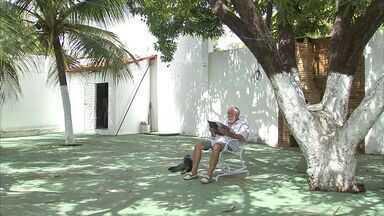 NE Rural tira dúvida de fortalezense cuja mangueira está doente - Você pode enviar sua dúvida ao NE Rural.