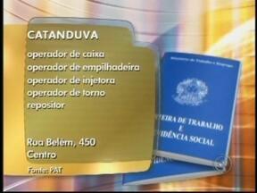 Confira as vagas de emprego anunciadas no Bom Dia Cidade de Rio Preto, SP - Na região noroeste paulista, o mercado de trabalho abre novas vagas. Estão disponíveis vagas como pintor e operador de caixa. Veja as anunciadas no Bom Dia Cidade desta quinta-feira (10).