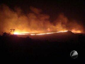 Fogo destrói há quatro dias a vegetação da Serra do Sobradinho na Chapada Diamantina - O incêndio já atingiu uma área de 500 hectáres.