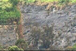 Sujeira em vegetação pode ser causa de queimadas no Sul do ES - Tempo seco também colaboca para propagação de fogo.