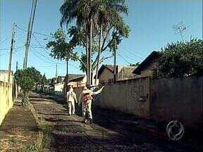 Para evitar epidemia, agentes de combate à dengue passam fim de semana nas ruas - Agentes de combate à dengue trabalham no final de semana para evitar epidemia da doença na cidade.