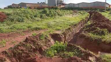 Chuva derruba árvores e danifica veículos em Paraguaçu, MG - Chuva derruba árvores e danifica veículos em Paraguaçu, MG