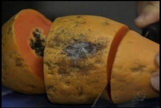 Confira mais uma dica de saúde do especialista Cláudio Lima - Aula desta segunda-feira é sobre fungos nos alimentos.