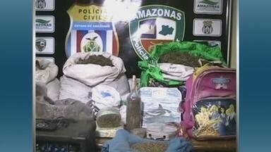 Polícia apreende mais de 50 kg de maconha em Maués, interior do Amazonas - Mais de 50 kg de maconha foram apreendidos nesta terça-feira (22) em uma comunidade localizada na região do Rio Araraí, em Maués, a 276 Km de Manaus. A polícia informou que chegou ao local após uma denúncia anônima. Duas pessoas foram presas.
