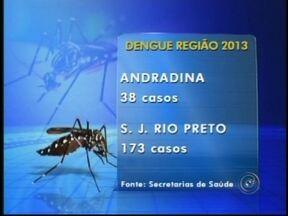 Rio Preto, SP, já registra 173 casos da dengue desde o começo do ano - Os números da dengue voltaram a subir na região noroeste paulista nestes últimos dias. As secretarias de saúde agora estão atualizando a confirmação de casos todos os dias. Em Rio Preto, já foram confirmados 173 casos da doença.
