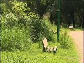 Moradores reclamam de parque que foi tomado pelo mato - O Parque fica no bairro Parque São Paulo e sofre também com o vandalismo.