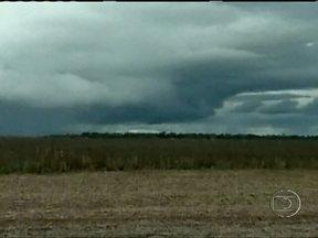 Chuva constante dificulta colheita da soja no Mato Grosso - O trabalho está atrasado devido à chuva e isso pode prejudicar o plantio do milho safrinha. Até agora, 11% da área destinada à soja foi colhida no estado.