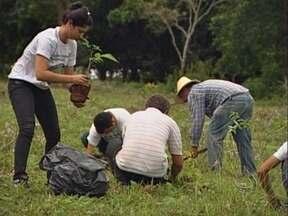 Projeto ajuda na preservação de nascentes em propriedades de MT - Num projeto no sul de Mato Grosso ajuda na preservação das nascentes em pequenas propriedades.