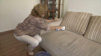 Aprenda dicas para limpar tapetes e sofás - Processos são fáceis
