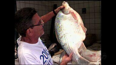 Consumidores de Juazeiro do Norte reclamam do preço do peixe - Aumento é devido a aproximação da Páscoa.