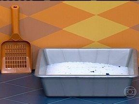 Limpeza deve ser redobrada em casas com animais de estimação - As fezes de animais devem ser recolhidas imediatamente e descartadas no vaso sanitário. As fezes de pombos podem transmitir doenças. Por isso, é importante usar luvas e um pano úmido para a limpeza.
