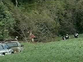 Avião cai e acidente mata piloto em Chapada, RS - A aeronave estaria passando agrotóxico em lavouras.