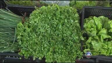 Economista doméstica explica melhor forma de planejar a compra de hortaliças - Na Ceasa, reportagem mostra aumento de preço de vários produtos.