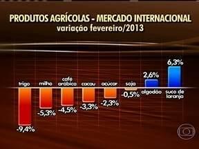Produtos agrícolas tem queda nas bolsas internacionais em fevereiro - O mercado internacional teve queda nos produtos agrícolas. Os grãos como trigo e milho foram os que mais desvalorizaram.