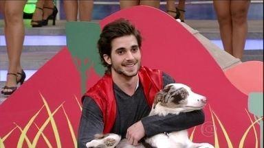 Fiuk e Gaia cumprem desafio do Cachorrada VIP - Ator brilha com a cadelinha no programa do Faustão