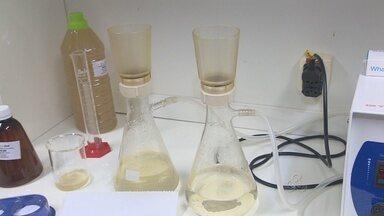 Água do Rio Madeira é monitorada em laboratório da Usina Hidrelétrica - O sistema de análise também estuda a qualidade da água de rios próximos.