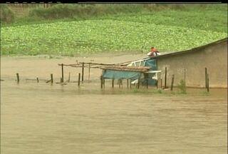 Região de Salinas em Nova Friburgo sofre com as chuvas - Boa parte da lavoura foi perdida. Produtores aguardam o tempo esquentar para retomarem os trabalhos.