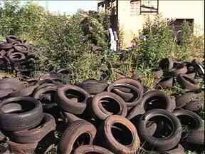 Descarte irregular de pneus em Paranacity é risco de dengue, dizem os moradores - Telespectadores da cidade entraram em contato com o ParanáTv para reclamar da situação do antigo matadouro municipal, que está cheio de pneus velhos jogados pela prefeitura.