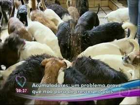 Acumuladores de animais: moradoras de Curitiba criam 70 cães em casa - 'Fui dominada por eles', confessa Dona Erli, que já teve 129 animais