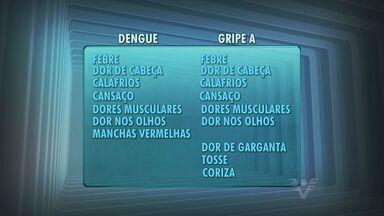 Mais uma morte por dengue e suspeita de gripe A deixam região em alerta - Já são sete casos fatais de dengue na Baixada Santista