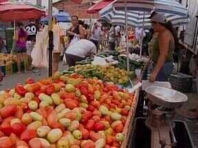 Preço do quilo do tomate cai e chega a custar R$ 1 nas feiras de Teresina - Consumidor volta a comprar o produto que já custou R$ 7 no Piauí.Feirante diz que a baixa procura no mercado reduziu o preço do fruto.