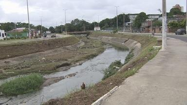 Área do Prosamim recebe trabalho de limpezas, em Manaus - Moradores criticam falta de manutenção em área