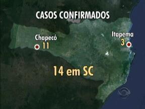Número de focos e casos de dengue preocupa população de Santa Catarina - Número de focos e casos de dengue preocupa população de Santa Catarina