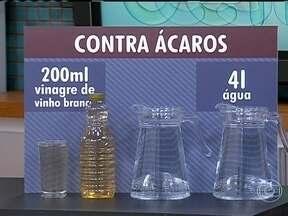 Aprenda uma solução caseira para combater os ácaros - Uma mistura de 200ml de vinagre de vinho branco com quatro litros de água funciona como acaricida. Basta aplicar com uma escovinha ou com um borrifador.