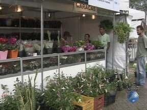 Tradição de dar flores no Dia das Mães ainda é forte em Salvador - Um dos locais de vendas de flores mais conhecidos da capital baiana fica no Dique do Tororó.
