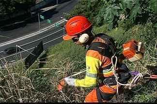 Garis treinam com bombeiros para limpar pedras e encostas de Vitória - Eles chegam a subir mais de 40 metros de altura para fazer limpeza.