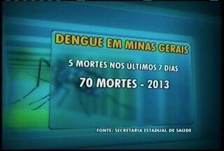 Minas Gerais registra 70 mortes por causa da dengue em 2013 - Somente nos últimos sete dias cinco mortes foram registradas.