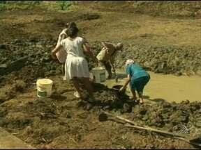 Seca na Bahia causa prejuízo de mais de R$ 4 bilhões - O balanço foi divulgado nesta terça-feira pela Federação da Agricultura e Pecuária.