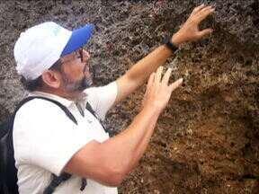 Ernesto Paglia mostra curiosidades da Ilha de Curaçao - O repórter mostra corais que, com a diminuição do nível do mar na região, ficaram fora da água na forma de rocha. Ernesto Paglia mostra também que de um lado da ilha de Curaçao, a água não é mansinha como é costume no Caribe.