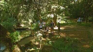 Procurada por turistas, cachoeira de Águas da Prata tem lixo e mato alto - Procurada por turistas, cachoeira de Águas da Prata tem lixo e mato alto.