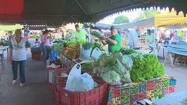 Consumidores acreditam que verduras, frutas e produtos frescos da feira são mais saudáveis - De acordo com os feirantes o período da manhã é o mais movimentado devido a procura dos produtos frescos.