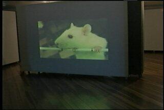 Você conhece a VideoArte? - Uma mostra no Museu de Arte de Santa Maria pretende divulgar este tipo de expressão artística.