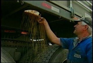Má conservação de estradas e caminhões provoca perdas no transporte de grãos. - O movimento nas empresas que recupera, carrocerias cresce 40 % nesta época do ano.