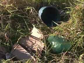 Lixo em meio a mato alto aumentam risco de dengue em Umuarama - Funcionários da prefeitura, que poderiam estar fazendo limpeza e manutenção das praças, acabam fazendo a manutenção de terrenos particulares. Prefeitura cobra dos proprietários pelos serviço.