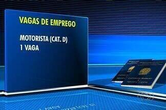 Confira as vagas de emprego em Goiânia - Há vagas para teleoperador e motorista.