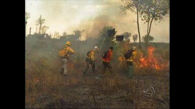 Fogo consome metade de terra indígena em Mato Grosso - Mais da metade da área indígena Marãiwatsédé foi queimada. O incêndio que consome o local há mais de um mês pode ter origem criminosa, segundo o Ibama.