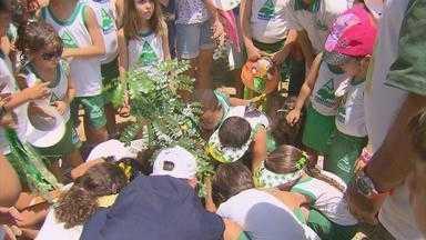 Caminhada ecológica marca dia da árvore no Recife - Lagoa do Araçá recebeu ações de preservação da natureza.