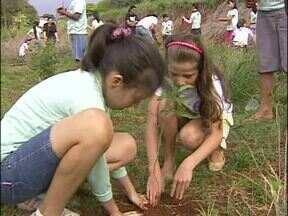 No dia da árvore, crianças plantam mudas nas margens de rios - Mata ciliar de rios de Foz ganharam mudas.